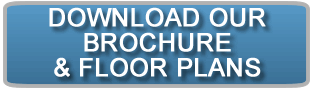 download-brochureBtn1